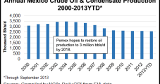 Fitch: Mexico's Energy Reforms Benefit Pemex, CFE in Long Run