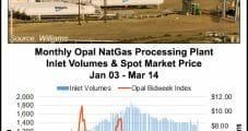 Processing Plant Explosion Halts NatGas Deliveries from Opal Hub
