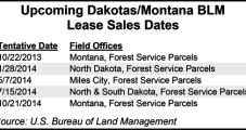 BLM Nets $49.8M from Dakotas Lease Auction