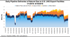 U.S. LNG Terminals Took Record Natural Gas Deliveries in July, Says EIA