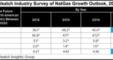 U.S. NatGas Industry's 'Exuberance' Waned in 2015, Survey Says