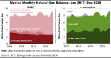 Mexico Natural Gas Market Hangs On in Tortuous 2020