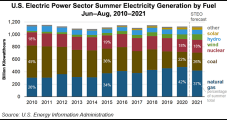 Pricier Natural Gas to Generate Less U.S. Power This Summer, EIA Says