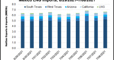 Mexico Natural Gas Market Spotlight: July Imports Slip on Lower Demand