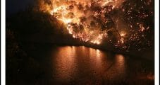 PG&E Proposing Broad California Wildfire Mitigation in Rate Hike Request
