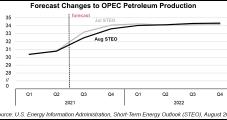 U.S. Petroleum Demand Holds Strong Even as Delta Variant Raises New Worries