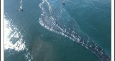 Amplify Says Southern California Offshore Oil Spill Cleanup Continuing